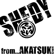 SHEDY from暁