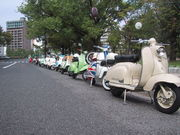 Vintage Scooter Club