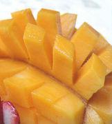 マンゴー好き!