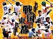 東都大学野球リーグ