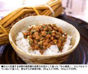 Natto Association in America