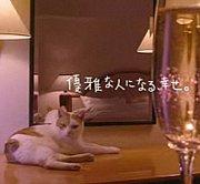 藤田観光2009年度内定者