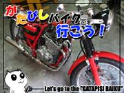 ガタピシバイクで行こう