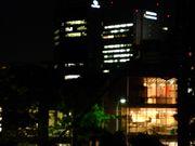 東京夜ピクニック
