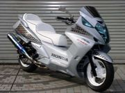 Silverwing!!!