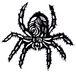 蜘蛛と蜘蛛の巣に痺れる