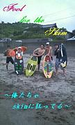Fool For the Skim  in  新潟県