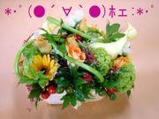 *・゚(●´∀`●)ホェ:*・゚