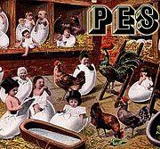 PES film