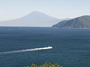 静岡東部 ちょっと写真とグルメ