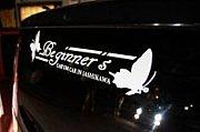 beginner'