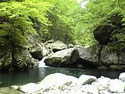 飛騨野遊倶楽部
