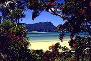 Whangarei of NZ