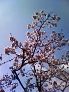 ♪京都センター 指導員の会♪