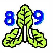 小坂小学校 1989年卒
