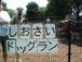 しおさいDOG RUNダッシュ〜♪