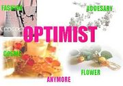 セレクト SHOP OPTIMIST