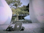 Freeline Skates in 東京