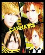 CANNAVIS