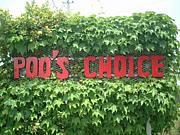 poo's choice プーズチョイス