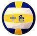 バレー 十色 (静岡)
