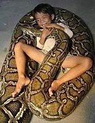**大蛇と暮らす**