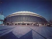 東京ドームで運動会する会?