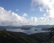 奄美大島 メインコミュ