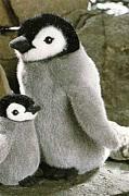 10月15日ペンギンカフェ!
