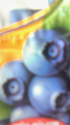 F.C.blue berry