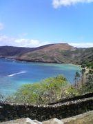 mixiにハワイを・・・