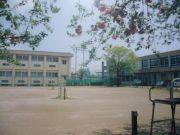 東葛テニス部