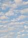 雲とお散歩