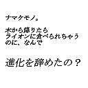 アンタッチャブル柴田の動物の話