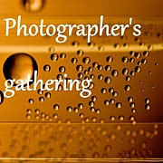 A photographer's gathering