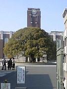 京都大学*2009年度入学生*