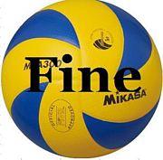 Team Fine 富山混合バレー