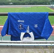 県立柏サッカー部1976‐77