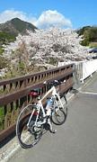 宮ケ瀬サイクリング