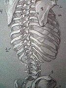 脊髄に腫瘍