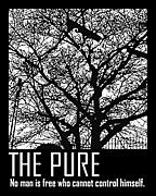 THE PURE