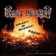 Steel Destiny