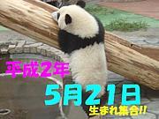 1990年(平成2年)5月21日生まれ!