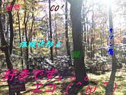 好きです…エコ(^ω^)in栃木
