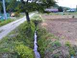 溝/側溝/用水路