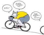 自転車はライフスタイル!!!