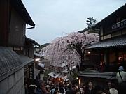 大人の京都を味わう会