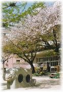 ♬市立長崎幼稚園♬