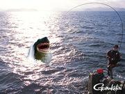【石 巻】海釣倶楽部