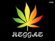 Reggae情報♪